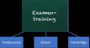 Diagram Examentraining: kan voor professionals, voor school of voor het Cambridge examen